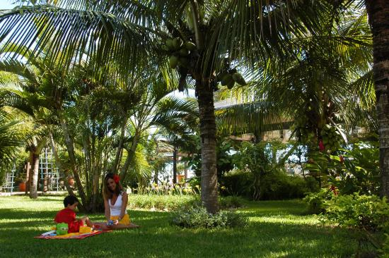 Costa Norte Ingleses Hotel: Jardim Hotel