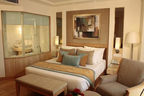 Vista Park: Room