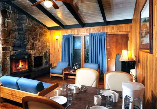Twin Falls Lodge : Living Room