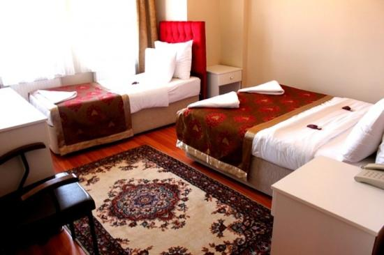Star Hotel Istanbul: Guest Room