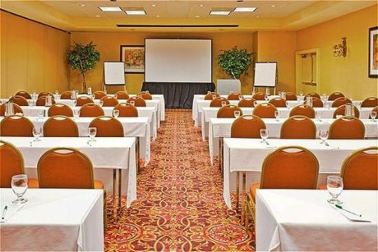 Holiday Inn Lethbridge: Meeting Room