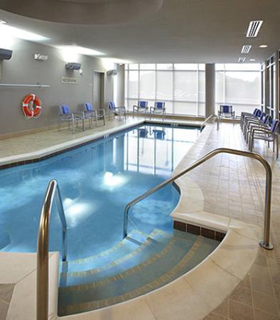 SpringHill Suites Columbus OSU: Indoor Pool