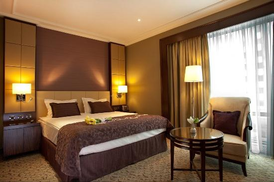 Kharkiv Palace Premier Hotel: Classic