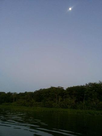 Lake Limoncocha: La laguna a las 7 de la noche
