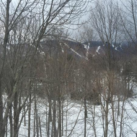 The Sugartree Inn: From our room you can see the slopes