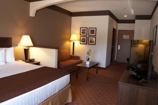 BEST WESTERN Tolleson Hotel: Guest Room