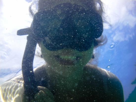 Awe Resort : Snorkling