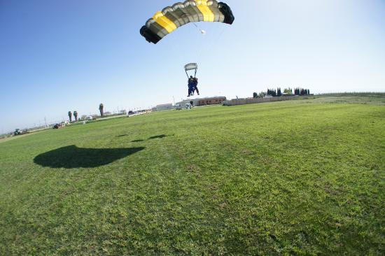 Tracy, CA: A nice soft landing on some great grass