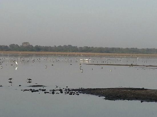 Menar Lake