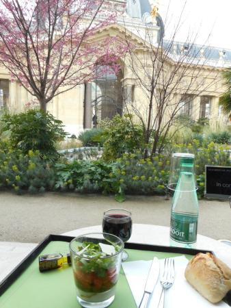 Le jardin photo de caf le jardin du petit palais paris for Cafe du jardin london