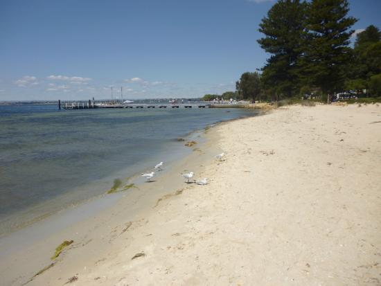 Walter's River Cafe : Sand Bar at Point Walter nice to walk along after eating