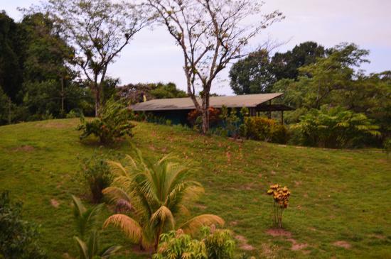 Drake Bay, كوستاريكا: vistas