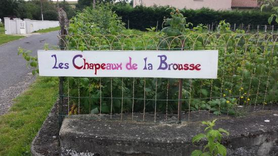 Les Chapeaux de La Brousse