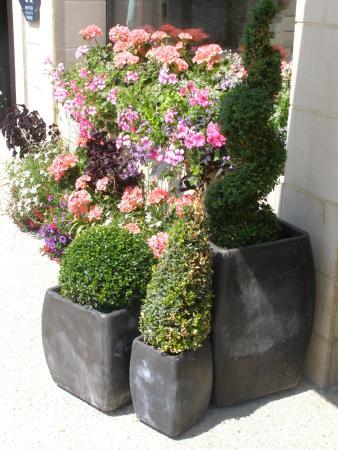 Hostellerie du Mont-Aime : Fleurs, jardin