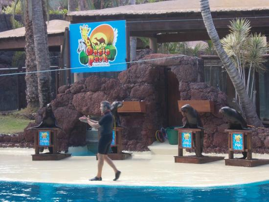 Reptilienshow - Picture of Oasis Park Fuerteventura, Fuerteventura - TripAdvisor