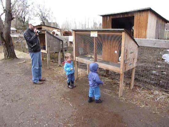 Wheeler Historic Farm: Can we take one home?