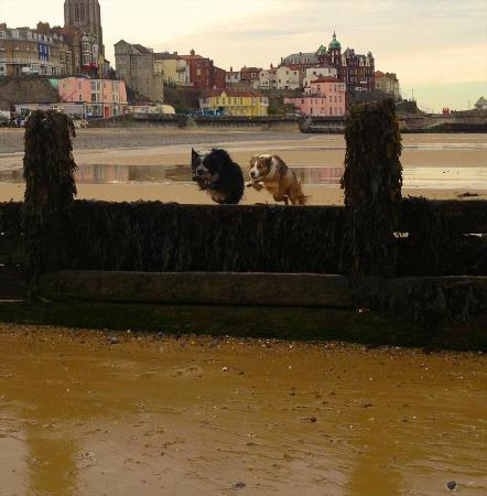 Chimneys B & B: Cromer - my favourite beach