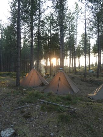 Findhorn, UK: Family camps
