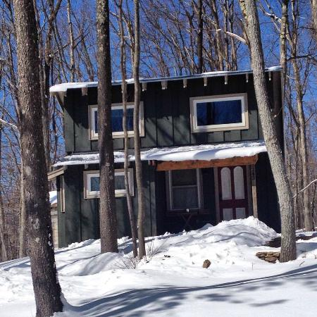 Blue Moon Rising: Walden Cabin