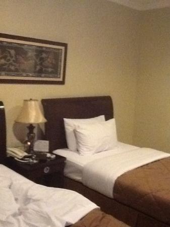 Sriwijaya Hotel: room executive