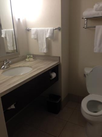 Holiday Inn Hotel & Suites Surrey East - Cloverdale: Bathroom - sink and counter