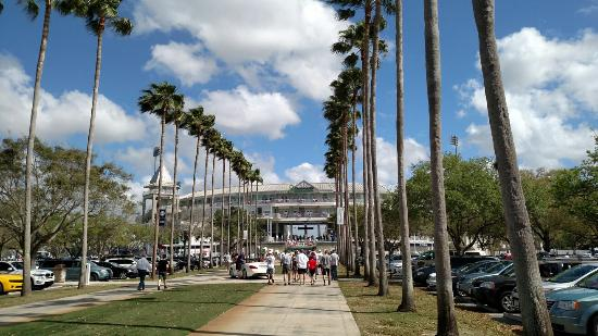 CenturyLink Sports Complex - Hammond Stadium: Hammond Stadium
