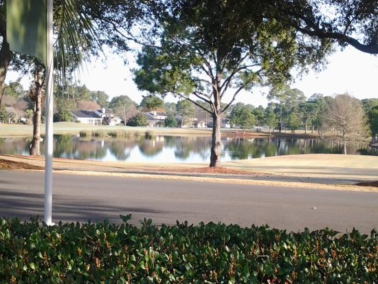 Courtyard by Marriott Sandestin at Grand Boulevard: The view of the golf course.