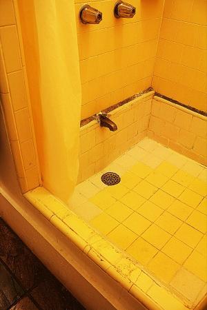 Kalaheo Inn: Filthy shower