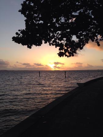 Palmeiras Beach Club at Grove Isle: Nascer do sol na pista de cooper que tem ao redor da ilha...