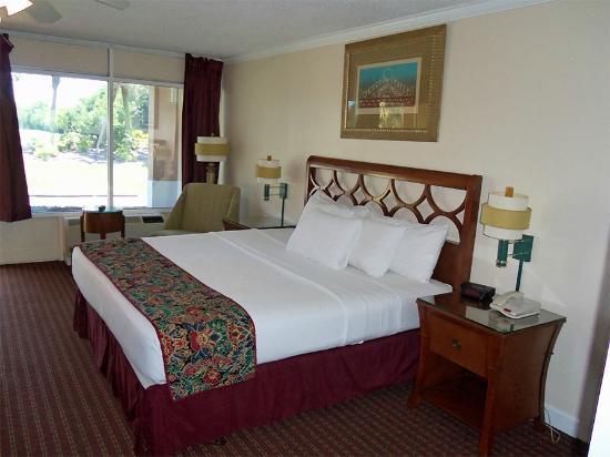 grand palms hotel spa and golf resort 76 1 3 0 updated 2019 rh tripadvisor com