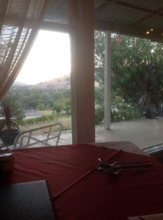 Garden Motor Inn : from the dining room