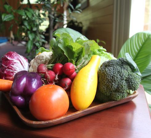 Sanivan Holistic Retreat and Spa: Veggies from the organic garden