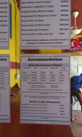 Scuba Junkie Backpackers: room rate