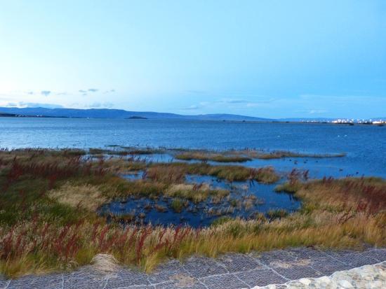 Altos de la Costanera - Aparts: Vista de la Bahia Redonda desde Depto