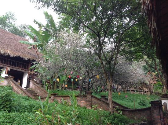 Hoa Binh Province, Vietnam: Mùa xuân