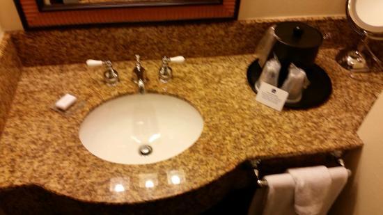 Best Western Plus St. Charles Inn: Extra sink