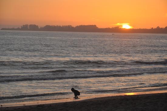 Rio Sands Hotel: Rio Del Mar beach