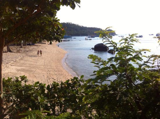 Queen Resort Koh Tao: View from my bungalow !!
