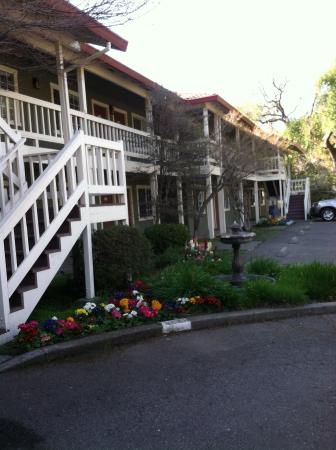 Jack London Lodge: Cozy