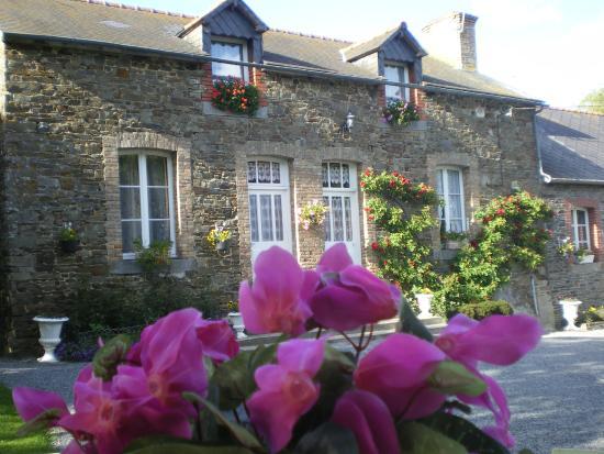 Les Prés Fleuris de Coat Argae : Vue extérieur