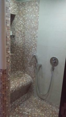 Al Raya Suites: The shower has a built-in seat
