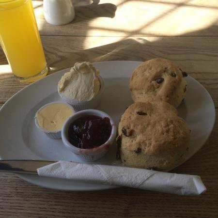 Shelly's Tea Rooms: Cream tea!