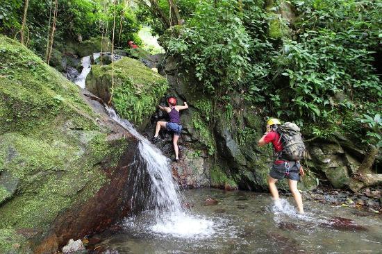 Bosque San Salvador