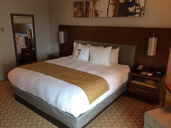 DoubleTree by Hilton Hotel Atlanta - Buckhead: King Size Bed
