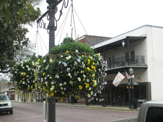 Historic District Shopping: Hanging baskets line the street