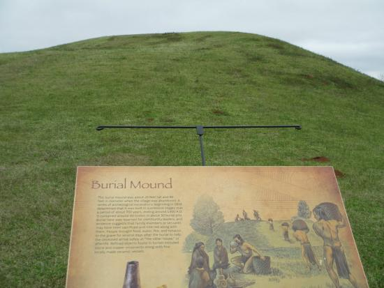 Caddo Mounds State Historic Site: View of mound with sign
