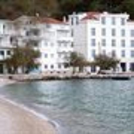 Mimice, Kroasia: MAESTOSO