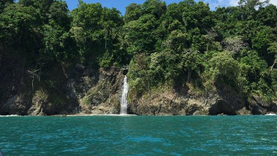Copa de Arbol Beach and Rainforest Resort: Waterfall Returning from Corcovado National Park