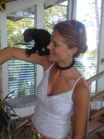 Hotel Boca Brava : Visiting little monkey from Rachael's Ark Refuge