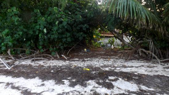 Villa Anse La Blague: Strandzugang beim Hotel 1
